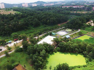 lush-green-park